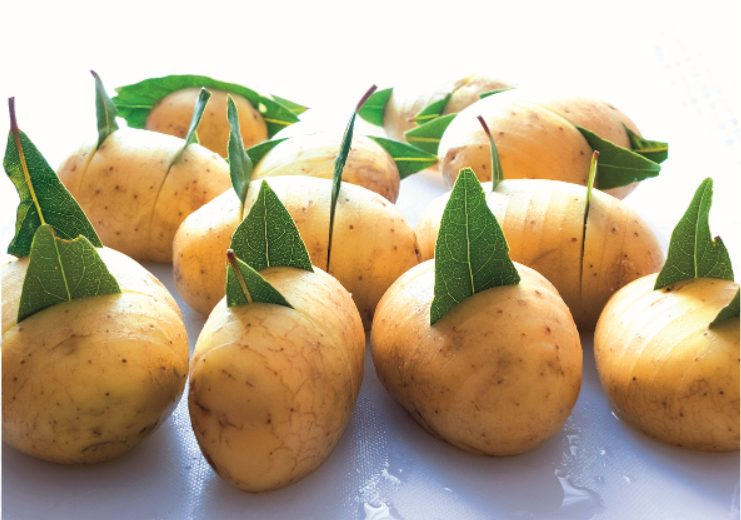 Pom'lorette pommes de terre laurier